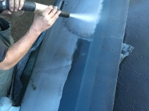 Big Moose Pressure Cleaning – Williamson, GA