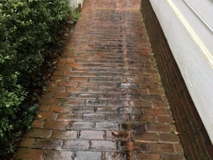 Big Moose Pressure Cleaning – Jackson, GA