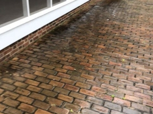 Big Moose Pressure Cleaning – Oxford, GA