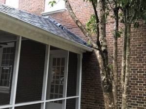 Big Moose Pressure Cleaning – Mansfield, GA