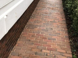 Big Moose Pressure Cleaning – Flovilla, GA