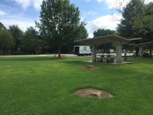 Big Moose Pressure Cleaning – Blacksville, GA